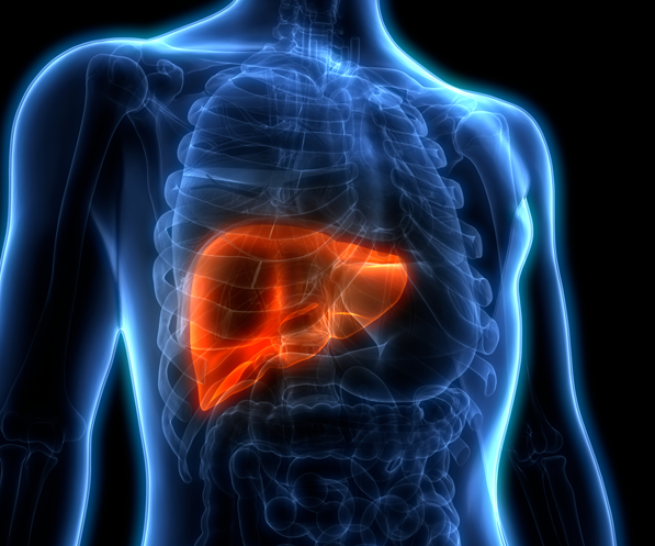 Liver Diseases and Conditions
